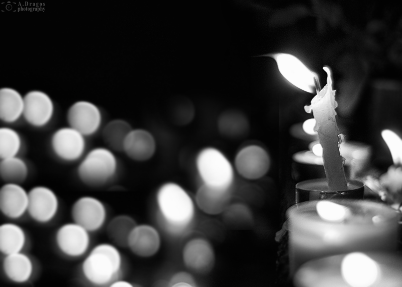 luminatia-ziua-celor-morti-6