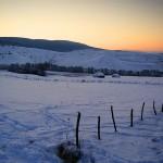 Apus de iarnă 3 - Nikon D7000, 1/1000s, f/3.5, iso 320, 18-55