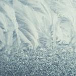 Flori de gheaţă 3 - Nikon D7000, 1/2000s, f/1.8, iso 125, 50 1.8