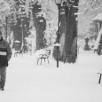 Te uită cum ninge decembre 2 - Nikon D7000, 1/2000, f/5, iso 200, 55-200 VR