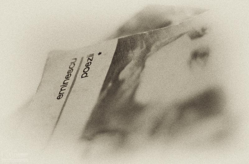 161 de ani de la naşterea lui Mihai Eminescu 2 - Nikon D7000, 50 1.8, 1/50s, f/1.8, ISO 640