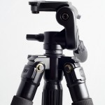 Trepied Fancier WF3642 3 - Nikon D7000 + 50 1.8 + SB-600, 1/100, f/10, ISO 250