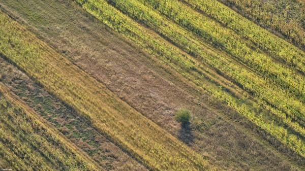 Zbor peste Transivlania: Forme ale pământului