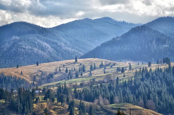Munții Rodnei, Bucovina