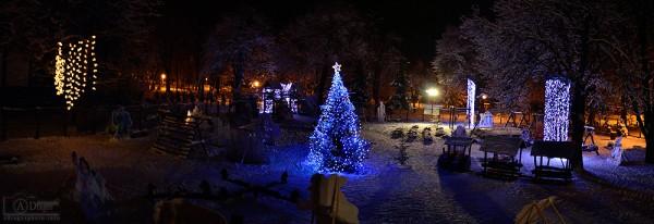Sărbătorile de iarnă