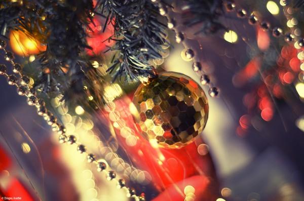 Pregătiri de Crăciun