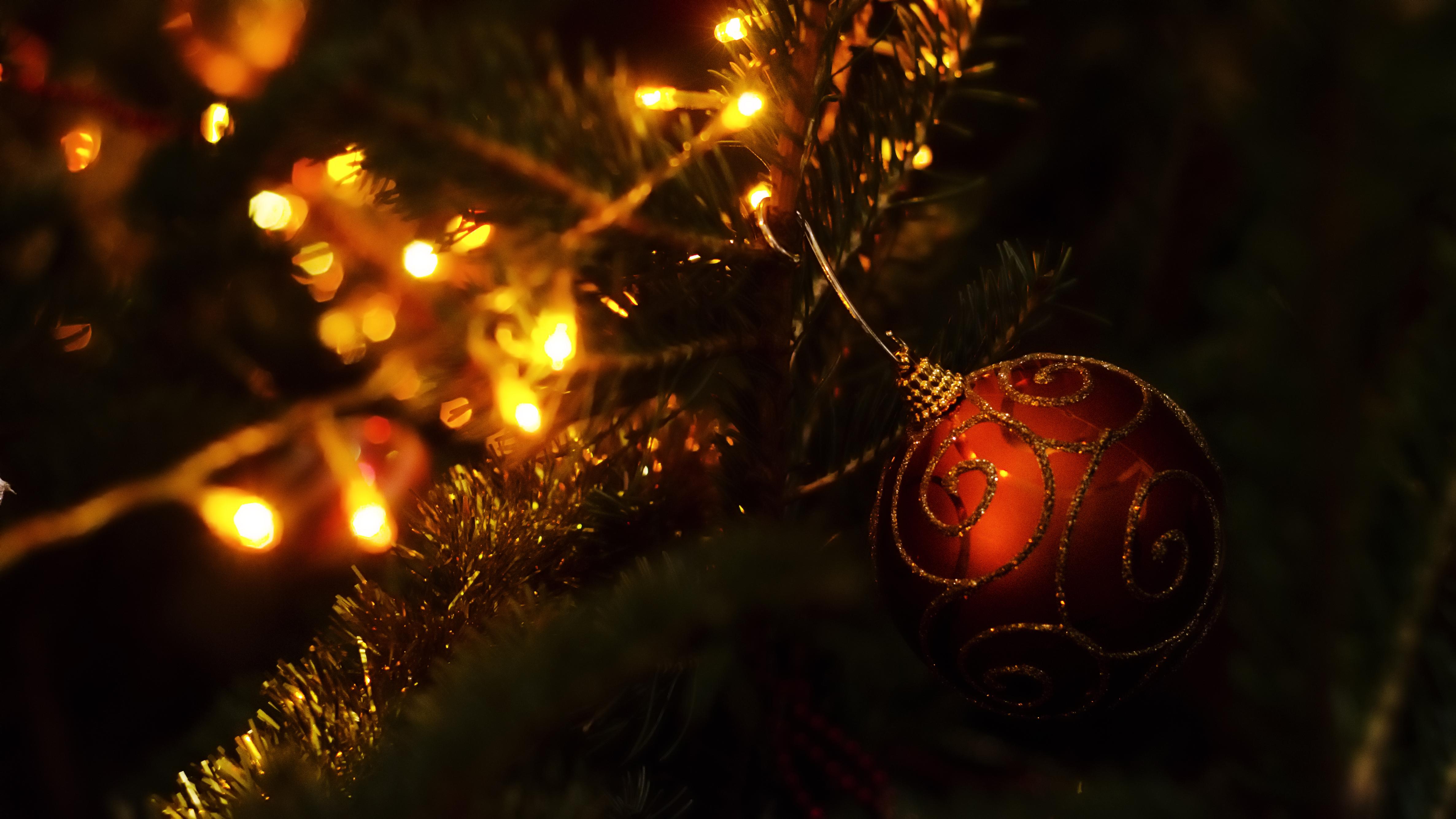 Dragoș Asaftei vă urează sărbători fericite! #2