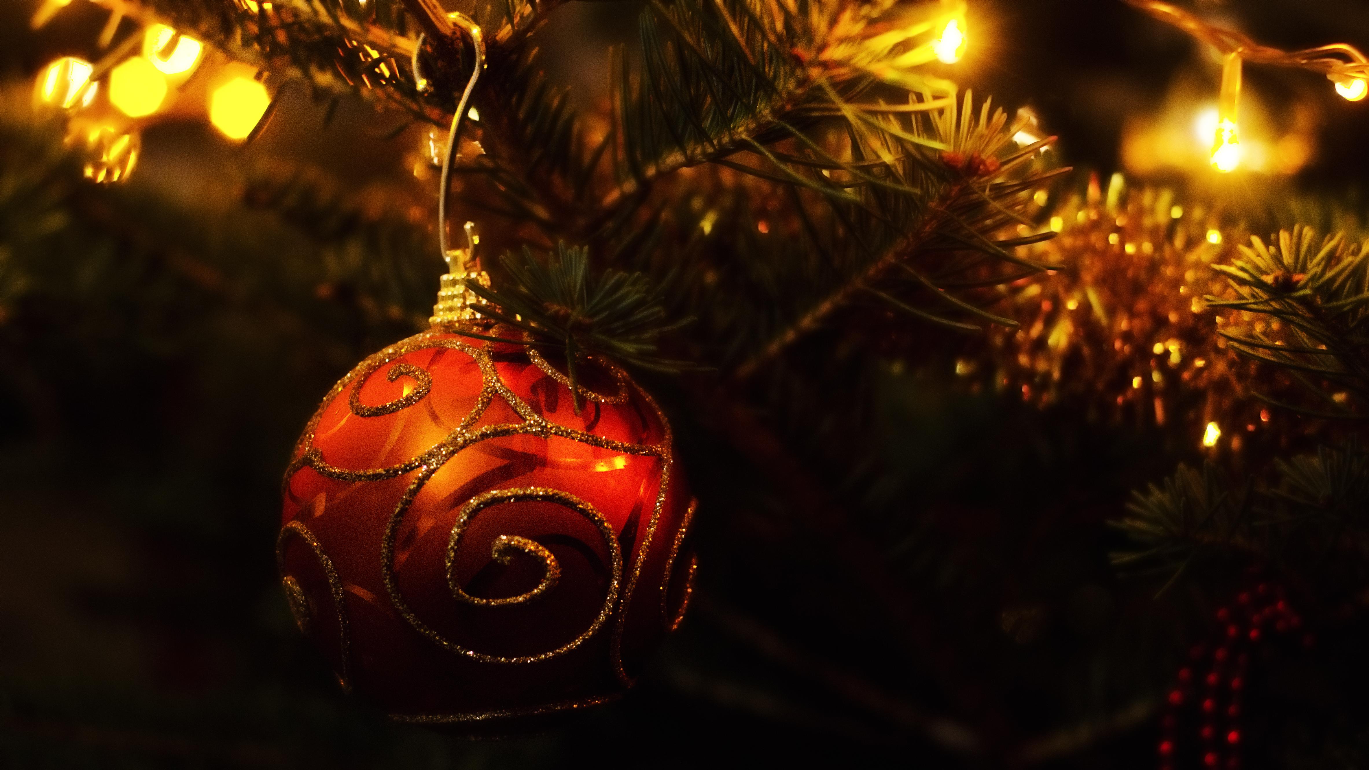 Dragoș Asaftei vă urează sărbători fericite! #3