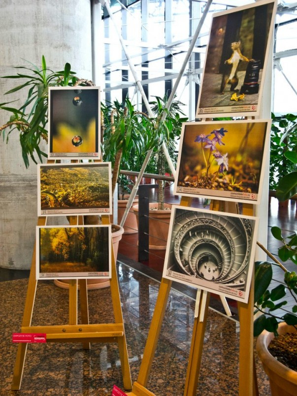 Expoziție Comunitate Foto - Dragoș Asaftei