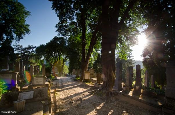 Cimitir de amintiri
