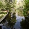 Fotografii din Parcul Cișmigiu