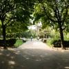 aFotografii din Parcul Cișmigiu