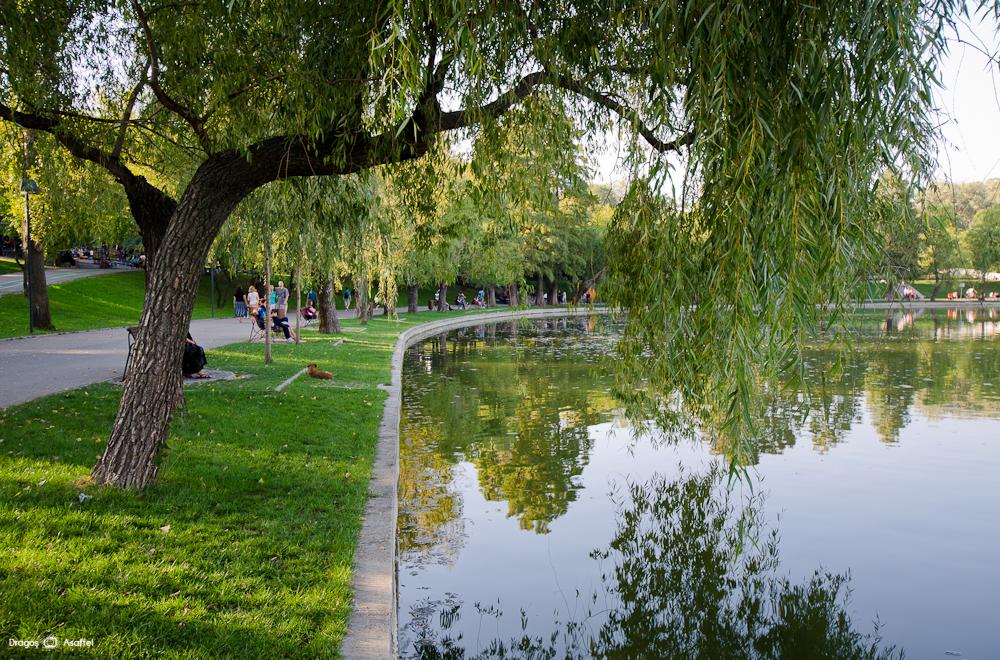 Fotografii - Parcul IOR