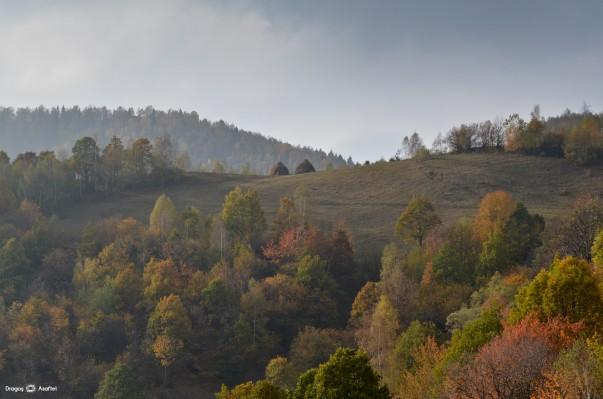 Tabăra de Fotografie pentru Bloggeri - Satul Plopi, Apuseni