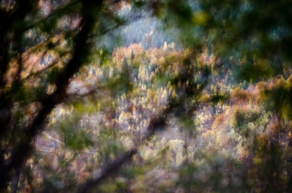 Peisajul apusenilor prin teleobiectiv