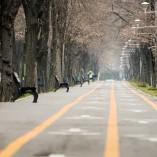 Plimbare prin Herăstrău cu Nikon 70-200 și TC2.0