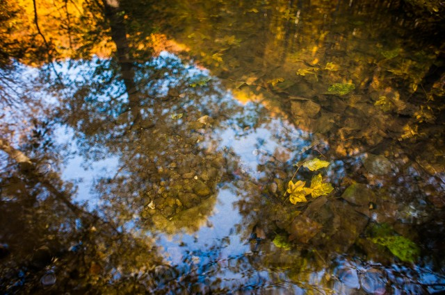 Peisajele și culorile toamnei în fotografii