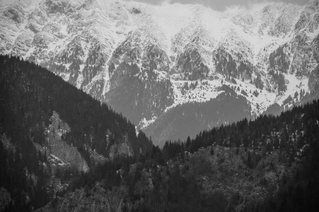 fotoreportaj-in-alb-negru-cu-noul-peugeot-308-23
