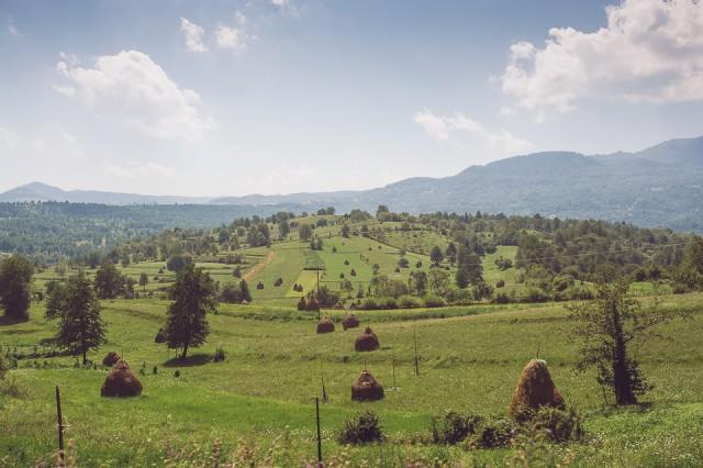 drumul-lung-spre-cimitirul-vesel-ziua-2-low-res-77