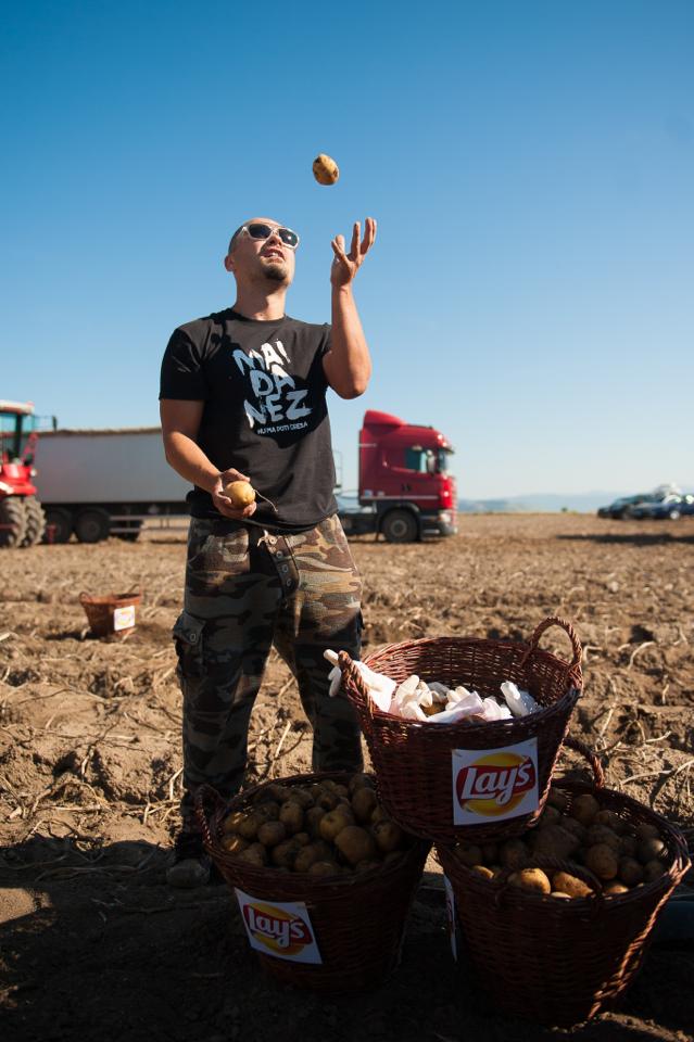 fermierii-lays-recoltarea-a-doua-zi-low-res-172_resize