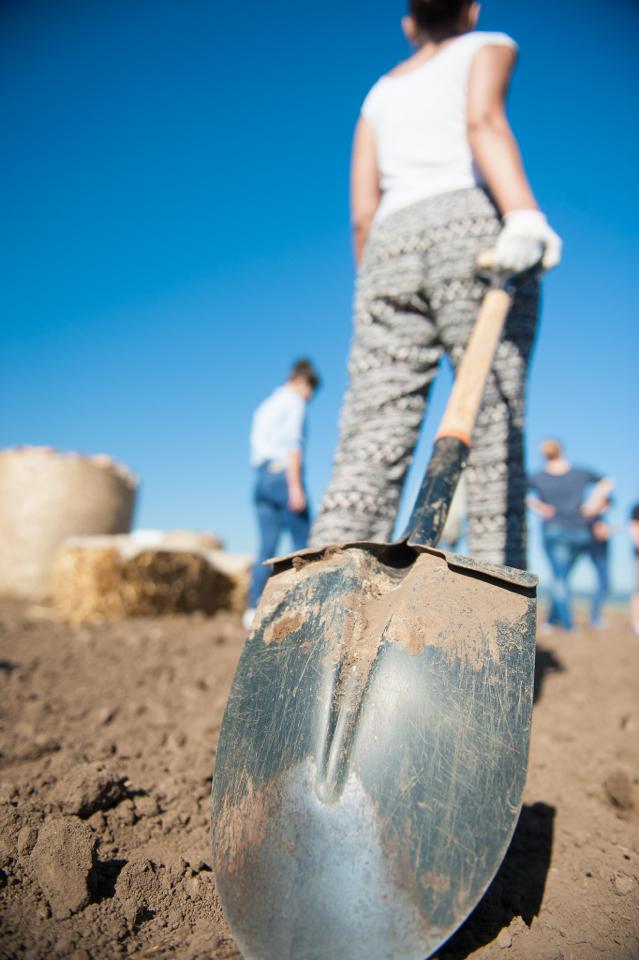 fermierii-lays-recoltarea-a-doua-zi-low-res-178_resize