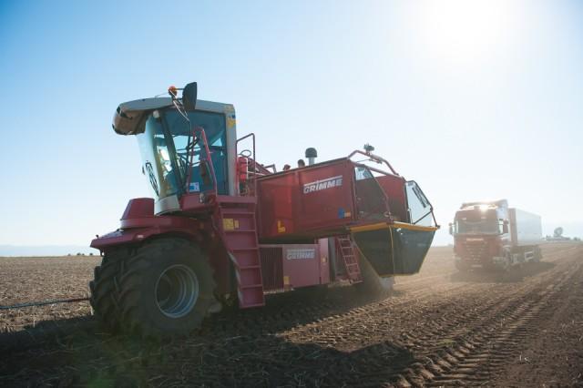 fermierii-lays-recoltarea-a-doua-zi-low-res-76_resize