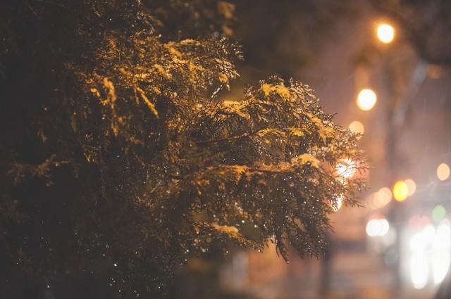 prima-ninsoare-foto-de-noapte-3