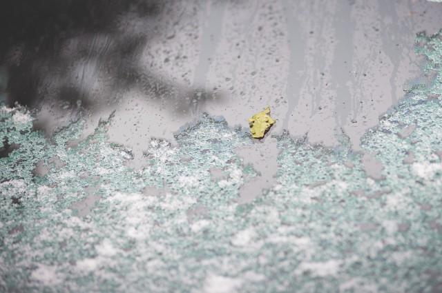prima-ninsoare-in-bucuresti-13