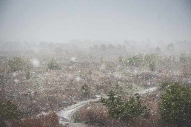 prima-ninsoare-in-bucuresti-22