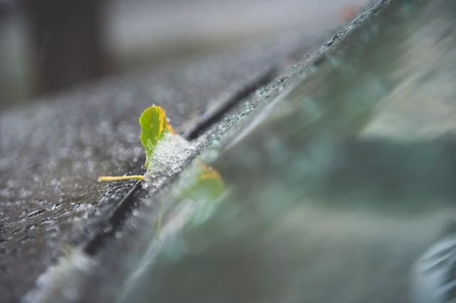 prima-ninsoare-in-bucuresti-4