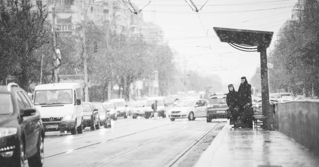 prima-ninsoare-in-bucuresti-5