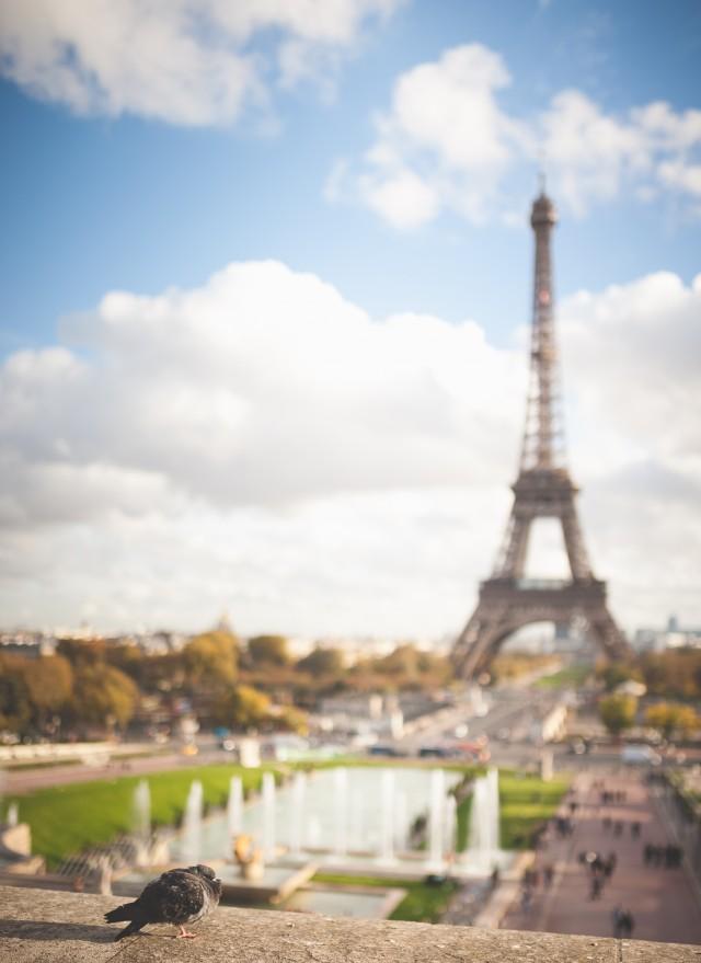 paris-web-res-27