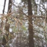 goodyear-winter-ziua-2-47