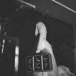 alexandra-usurelu-concert-la-capatul-lumii-4