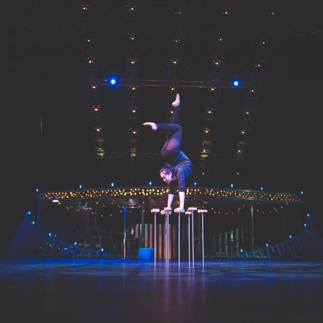 repetitii-cirque-du-soleil-web-res-4