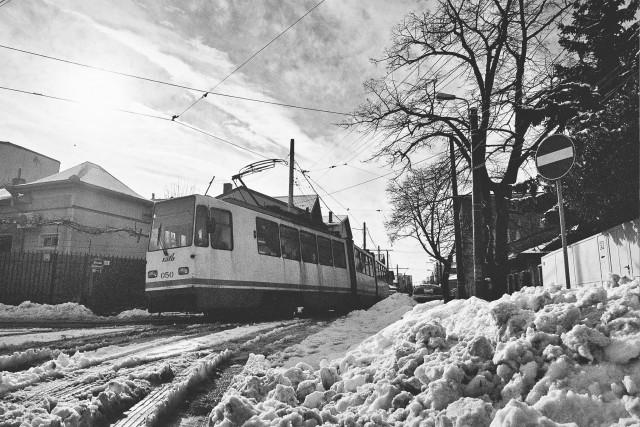 iarna-bucuresti-ianuarie-film-1
