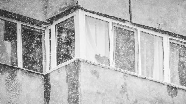 iarna-in-bucuresti-generale-19