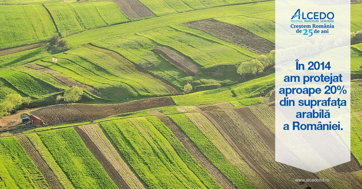 Terenuri agricole fotografiate din avion