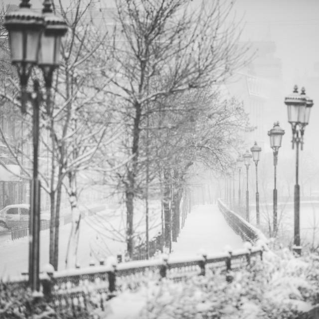 Iarna în București - Primele fotografii 24