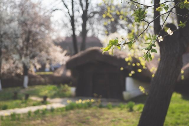 Galerie foto Primăvara la Muzeul Satului din București 11