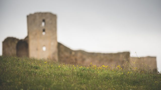 Cetatea Enisala 5