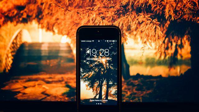 Wallpapere pentru telefoanele mobile cu fotografii de toamnă din București